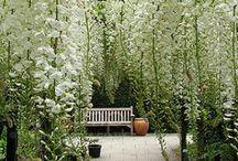 We Love Gardens