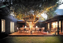 Modern on Quail / by Dee Dee Oliver Photography