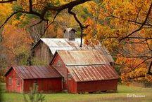 Barns / by Renee Rakoz