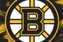 Boston Bruins / Bears of another sort... / by Bobby G