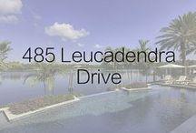 485 Leucadendra Drive