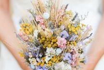 Flowers // Blümschen / Blumen sind in meinem Leben nicht wegzudenken, weil sie mir gute Laune machen, weil sie ein Zimmer aufwerten, Farbe und Stimmung reinbringen. Blumen sind bei mir auch eng mit Gemütlichkeit verbunden und auch genau deshalb nicht wegzudenken. Und bei dir?