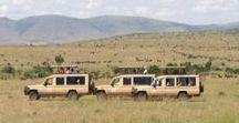 African Safari / African Safari #SightseeingTours and #AfricanSafari