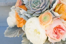Bridal Bouquets / by Shannon Marie Phillips-Long