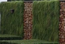 landscaping / by Marilaur Garner