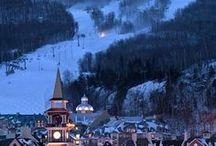 Luxury Skiing