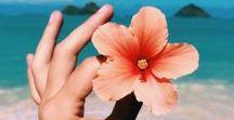 HAWAII TRAVEL / LIVING / Hawaii Travel, Living in Hawaii, Surfing in Hawaii, #hawaiitravel #surfinghawaii #travel #hawaii
