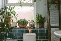 Rooms with Plants