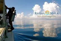 Adventure / by Riviera Maya