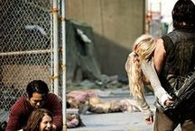 """The Walking Dead / Police officer Rick Grimes leads a group of survivors in a world overrun by zombies. """"this isn't a democracy anymore."""""""