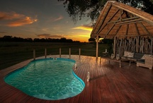 The Pools of Wilderness Safaris Camps / After the heat and dust of the day's activities, there's nothing as appealing as the ice-cold, crystal clear waters of your camp's pool.
