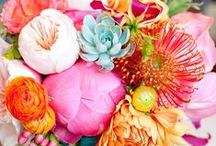 Flora / simply beautiful...