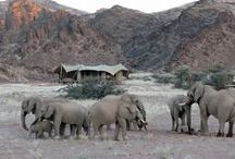 Hoanib Skeleton Coast Camp / Flanked to the east and west by rugged hills, this camp looks out over stunning, starkly beautiful Damaraland scenery and offers guests all the luxuries and amenities for an unforgettable stay.