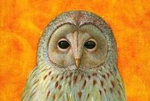 Owls / Animal art & Illustration