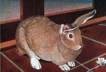 Rabbits & Hares / art & illustration