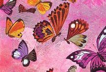 Butterflies & Moths / Animal art & Illustration