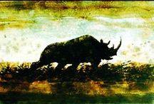 Hippos, Rhinos & Tapirs