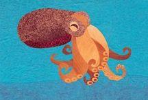 Cephalopods - Octopus, squid etc.