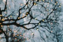Enchanted / the world is full of [ l i g h t ] / by Leah Anderson
