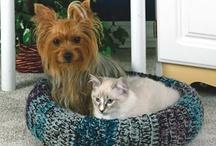 Nos amis les animaux !