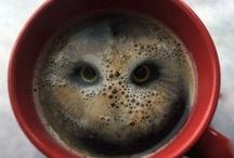Colazione - Breakfast / Una buona colazione per iniziare al meglio una giornata positiva!
