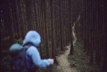 Into the Wild / the world is full of [ u n k n o w n  p l a c e s ] / by Leah Anderson