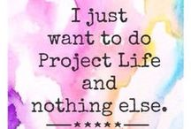 Project Life / by Julie {CalleLillyCafe}