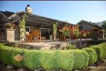 Tasting Room / Our tasting room is located in the Stags Leap District of Yountville. We're open daily from 10am to 4pm. We offer a variety of tasting experiences. Come visit us at 1473 Yountville Cross Rd., Yountville, CA. 707-944-8642