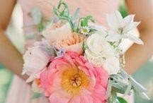 Getting married / weddings