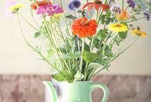 flowers / by Miss Honeybird