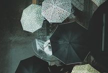 Umbrellas.• / by Loreen Adel