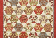 20 Hexagon Quilt / by Ellen Bee