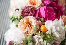 Wedding / by Ashton Marshall