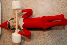 holiday: CHRISTmas elf on the shelf  / by Elizabeth Martin