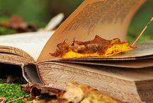 Sweet November  I  Cozy Autumn / by Magdalena Altnau