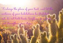 #PhotoFriday / A new, encouraging Bible verse each week!