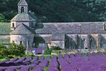 Abbayes, chapelles, eglises / by Sylvie Dupret-Voisin