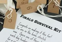 DIY Encouragement & Care Packages / From care packages to finals inspiration, use some of these ideas to help send encouragement your Badger's way.