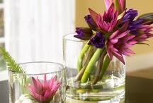 Creative flower displays