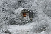 Wintering / Snow, hot cocoa, holiday decorations, books as gifts, and reindeer!