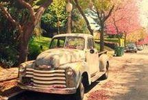 Four Seasons / photography