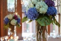 Weddings / by Christine Cavers
