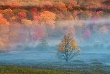 Autumn / by Brenna Ceallaigh
