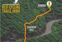 Best Cycling Trails