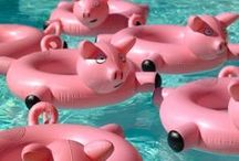 Piggy Balloon / Inflatable / Lantern