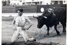 Bullfighter / Photos of Mid Century Bullfighters