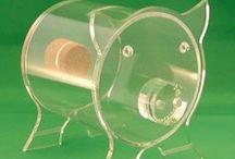 Piggy Bank ~ Glass / Transparent