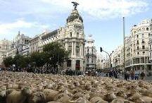 Madrid, Madrid, Madrid... / Bienvenidos al tablón apasionado de los enamorados de EL FORO, EL MADRID METROPOLITANO Y EL MADRID RURAL..  Si deseas acceder a este tablero pídenos invitación en un comentario. Gracias. Esperamos que te guste... De Madrid al Cielo...