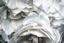 Platinum & White♣