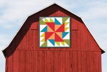 Barn Quilts / by Sue Utech